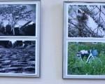 Открытие фотовыставки Владимира Ступинского «Залинейная перспектива» 21