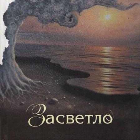 Презентация книги Нины Шкляровой в салоне «Встречи на Замковой»